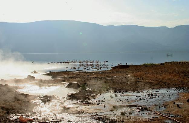 bogoria-national-reserve-camping-kenya12
