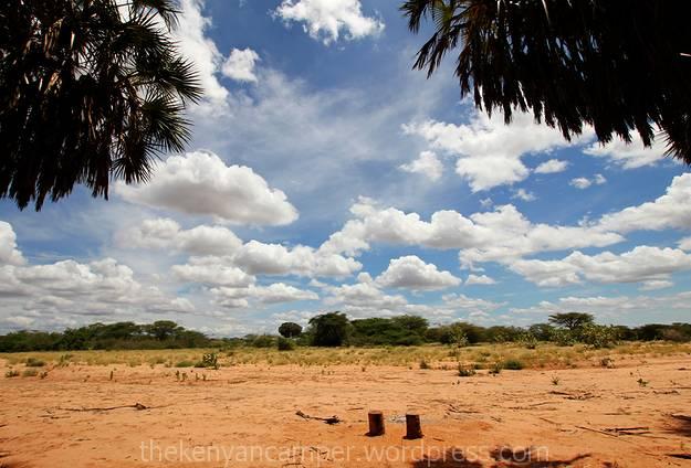 sera-wildlife-conservancy--kenya-bandas-25