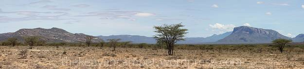 sera-wildlife-conservancy--kenya-bandas-25