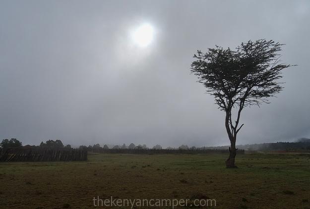 mukogodo-forest-camping-kenya-42