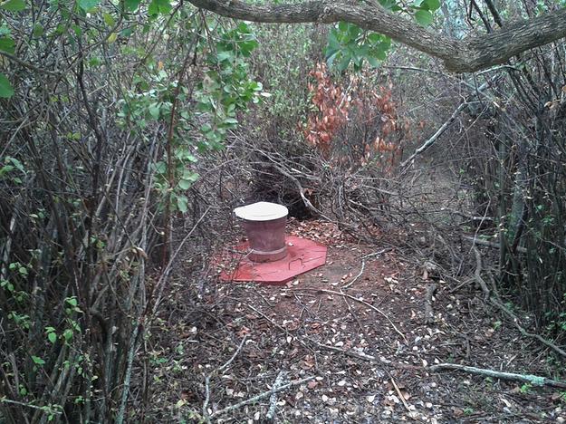 mukogodo-forest-camping-kenya-44