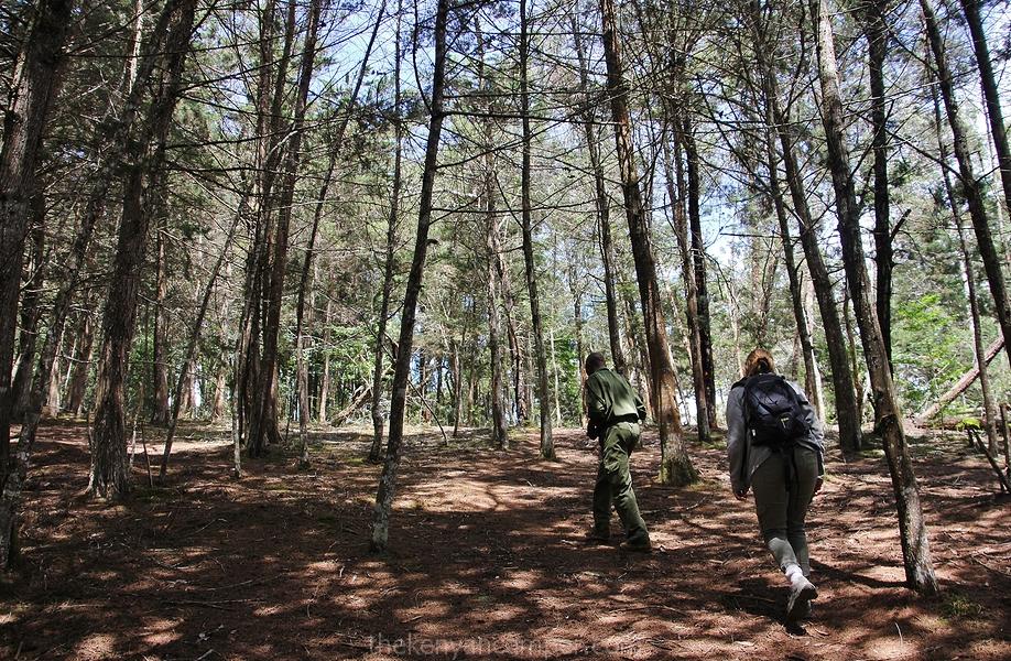 taita-hills-camping-kenya-30