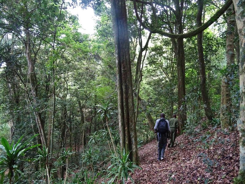 taita-hills-camping-kenya-47