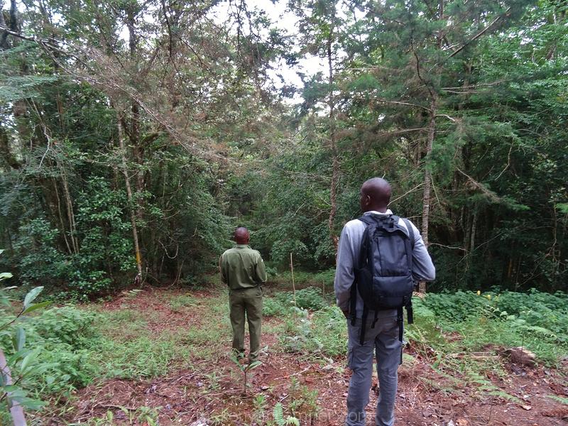 taita-hills-camping-kenya-80