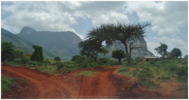 kasigau-bandas-tsavo-kenya-53