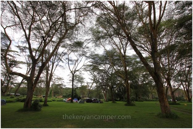 camping-carnellys-naivasha-kenya20