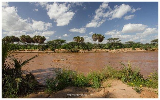 nakuprat-gotu-conservancy-kenya10
