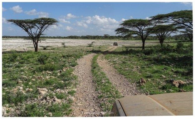 nakuprat-gotu-conservancy-kenya12