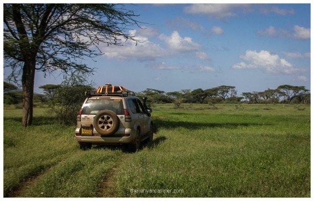 nakuprat-gotu-conservancy-kenya59