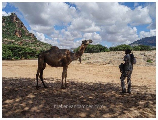 ndoto-mountains-samburu-marsabit-kenya19