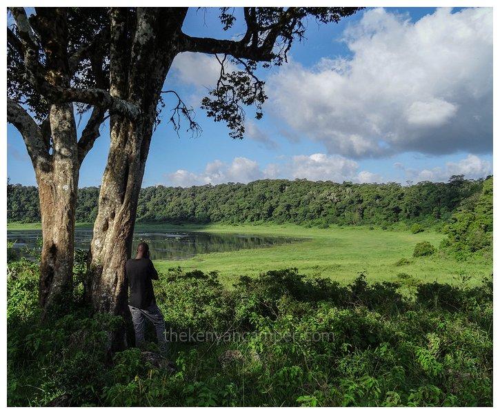 marsabit-national-park-camping-kenya23