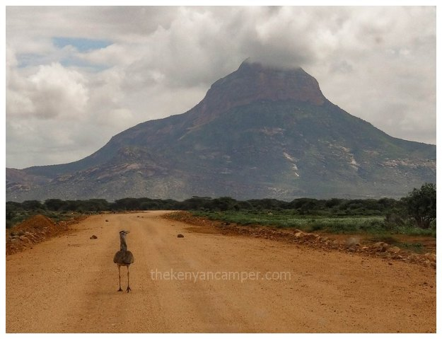 marsabit-national-park-camping-kenya4