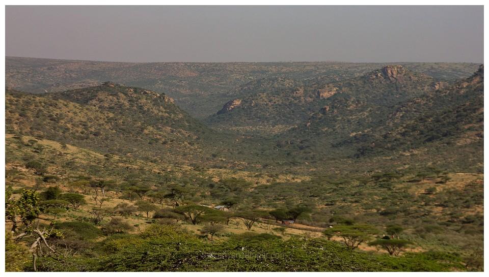 naibunga-conservancy-laikipia-camping-kenya-3