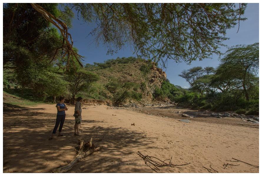 naibunga-conservancy-laikipia-camping-kenya-75