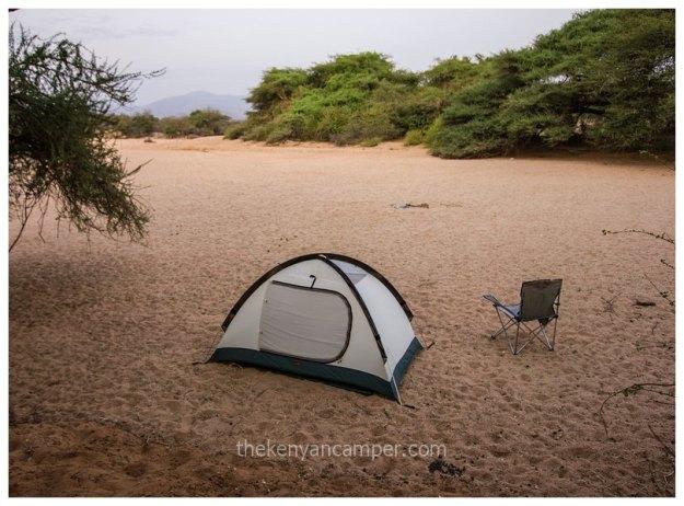 westgate-conservancy-camping-kenya-32