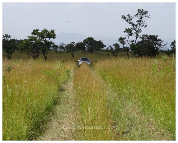 https://thekenyancamper.files.wordpress.com/2016/11/chyulu-hills-national-park-camping-kenya-9.jpg