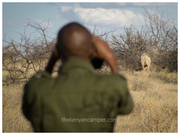 sera-conservancy-rhino-camping-kenya-25
