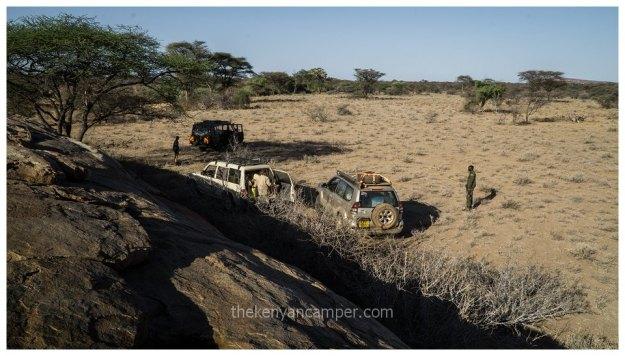 sera-conservancy-rhino-camping-kenya-38