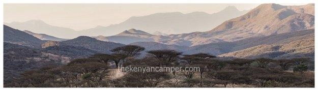 namunyak-mathews-range-samburu-kenya-46