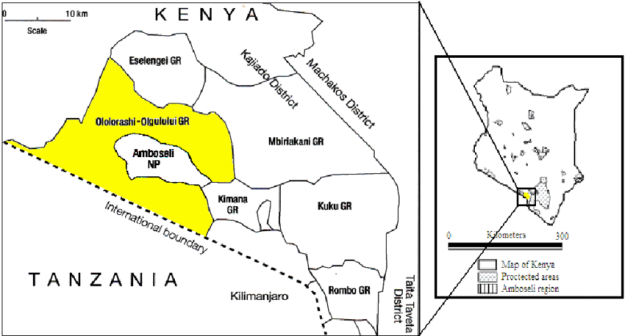 Fig-1-Amboseli-Ecosystem-showing-the-location-of-Olgulului-Ololorashi-Group-Ranch-in