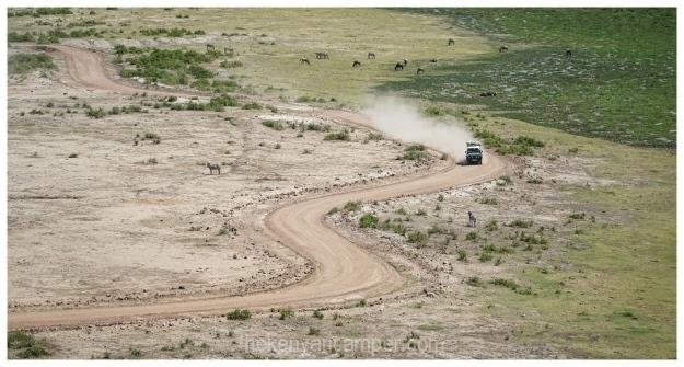 amboseli-olgulului-nyiri-desert-camping-kenya-56