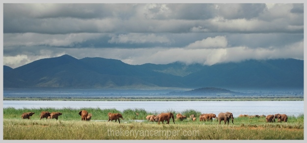 lake-chala-tsavo-west-lake-jipe-camping-kenya-96