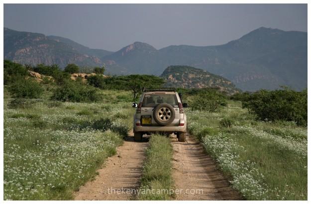 shaba-national-reserve-isiolo-camping-kenya-35