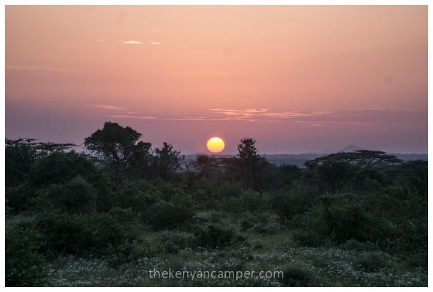 shaba-national-reserve-isiolo-camping-kenya-77