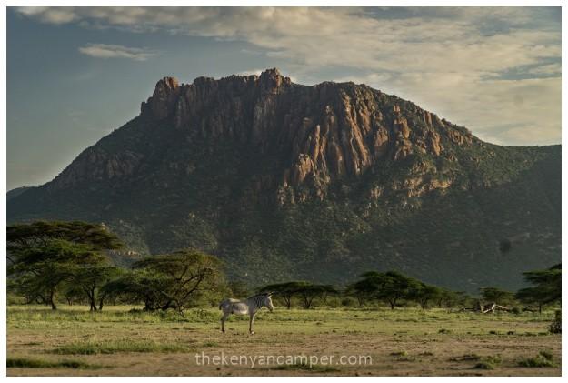 shaba-national-reserve-isiolo-camping-kenya-93